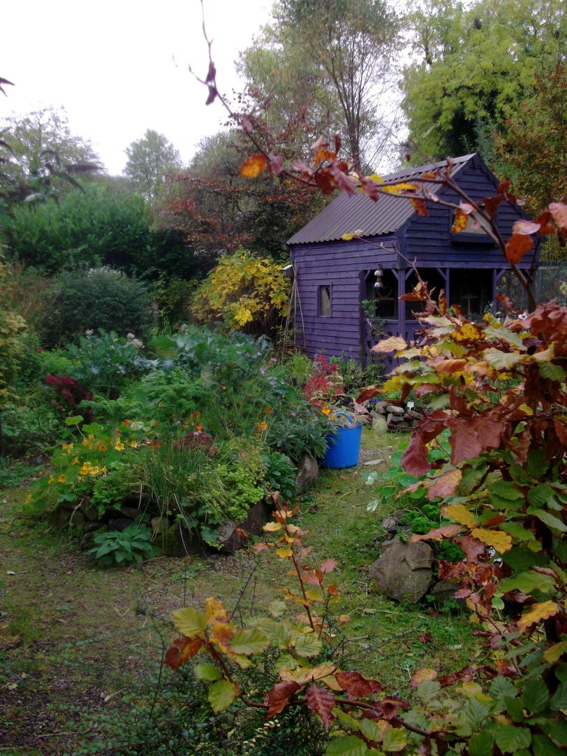 permaculture @ bealtainecottage.com 009