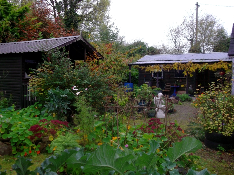 permaculture @ bealtainecottage.com 012