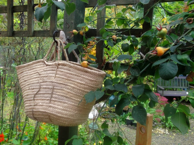 permaculture @ bealtainecottage.com 022
