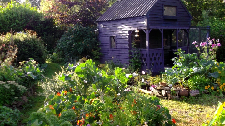 Autumn in the permaculture gardens of bealtainecottage.com 001