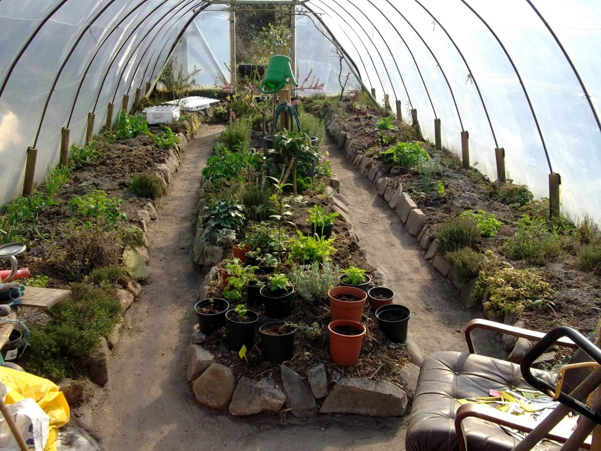 Beaten earth floor in ploytunnel at Bealtaine Cottage