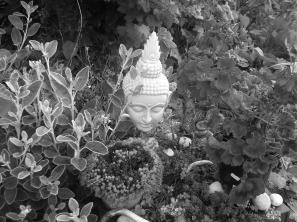 permaculture and Buddhism