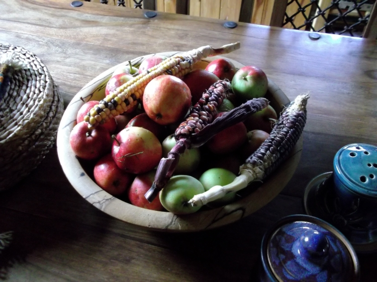 August 2011 permaculture cottage 002