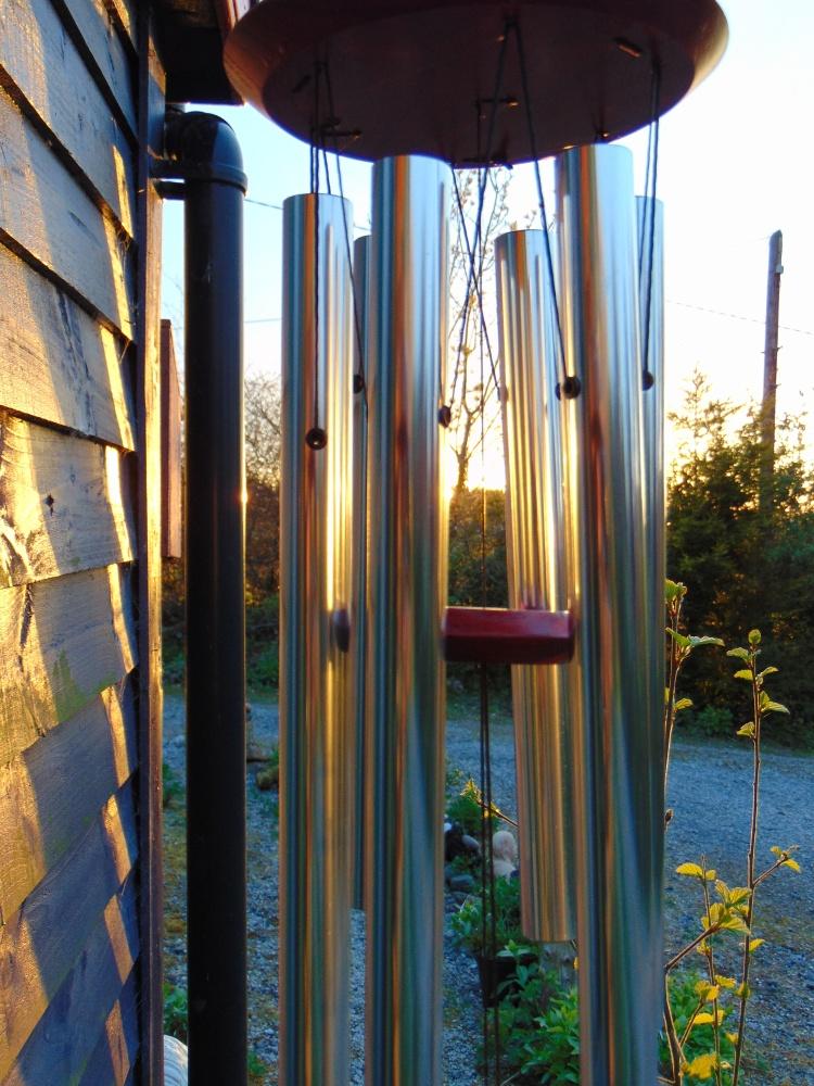 bealtainecottage.com open gardens 019