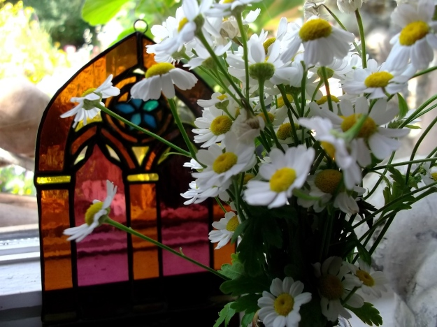 Feverfew and stained glass