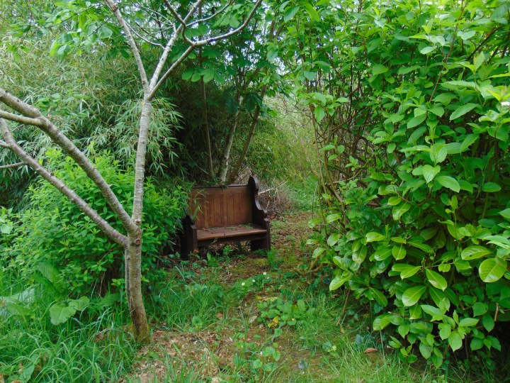 bealtainecottage.com permaculture 173