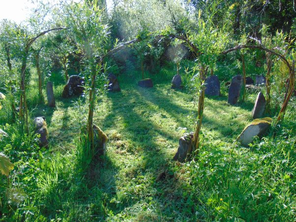 permaculture at bealtainecottage.org 020