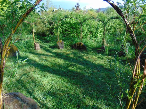 permaculture at bealtainecottage.org 026