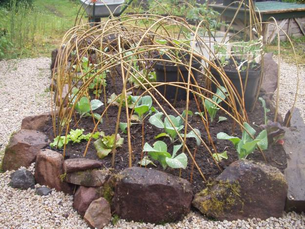 Potager bed at Bealtaine Cottage