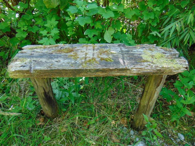 sustainable living at bealtainecottage.com 015