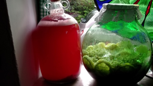 Bealtaine Cottage wine making