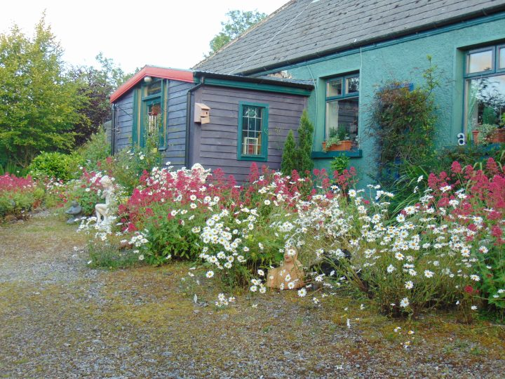 Garden permaculture at bealtainecottage.com 101