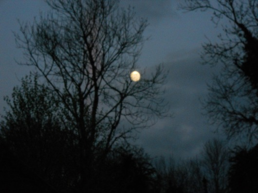 Full moon over Bealtaine Cottage Ireland