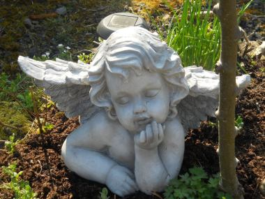 Angel at Bealtaine Cottage Permaculture March 2011 019