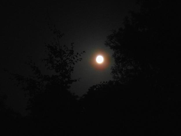 Full moon bealtainecottage.com 010