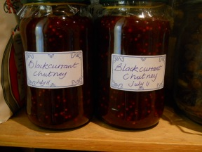 Home made Blackcurrant Chutney permaculture cottage 001