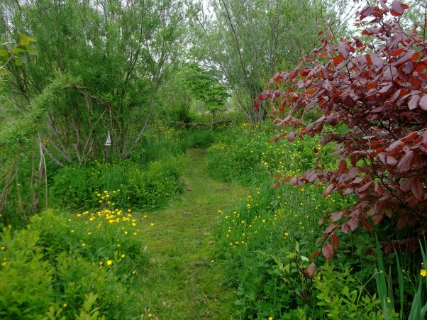 bog garden of bealtaine