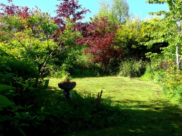 Front garden at Bealtaine Cottage