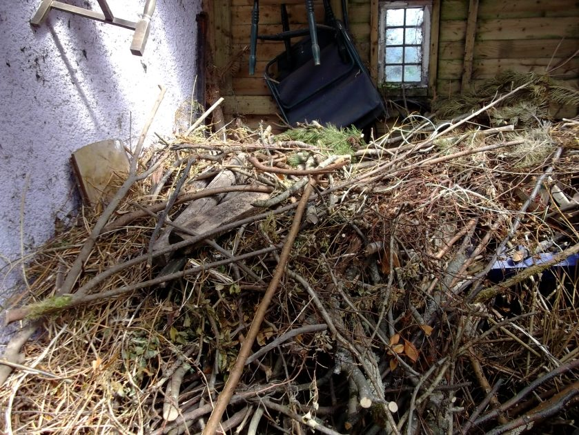 The woodpile in the barn at Bealtaine Cottage