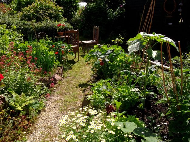 Bealtaine Cottage Potager beds today