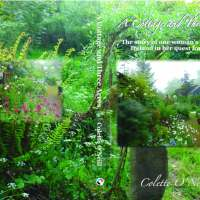 Bealtaine Cottage...the Book!