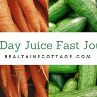 100 Day Juice Fast...A Private Journal