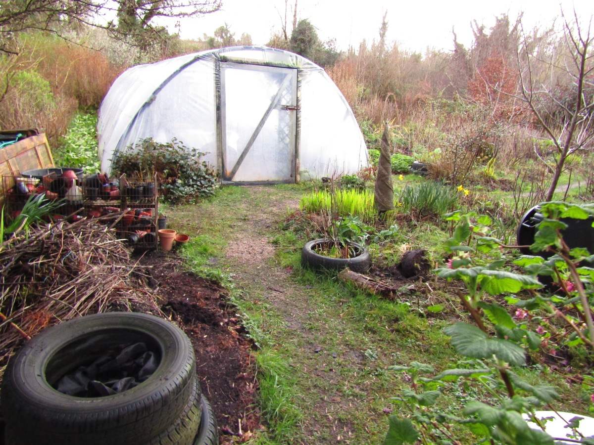 Growing Food in Cottage Gardens